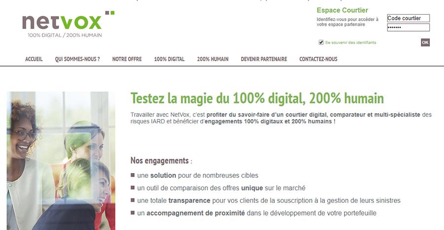 netvox-assurances.fr